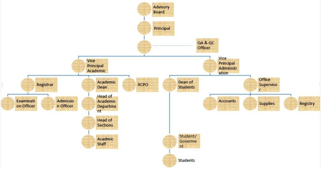 organizationstructure1